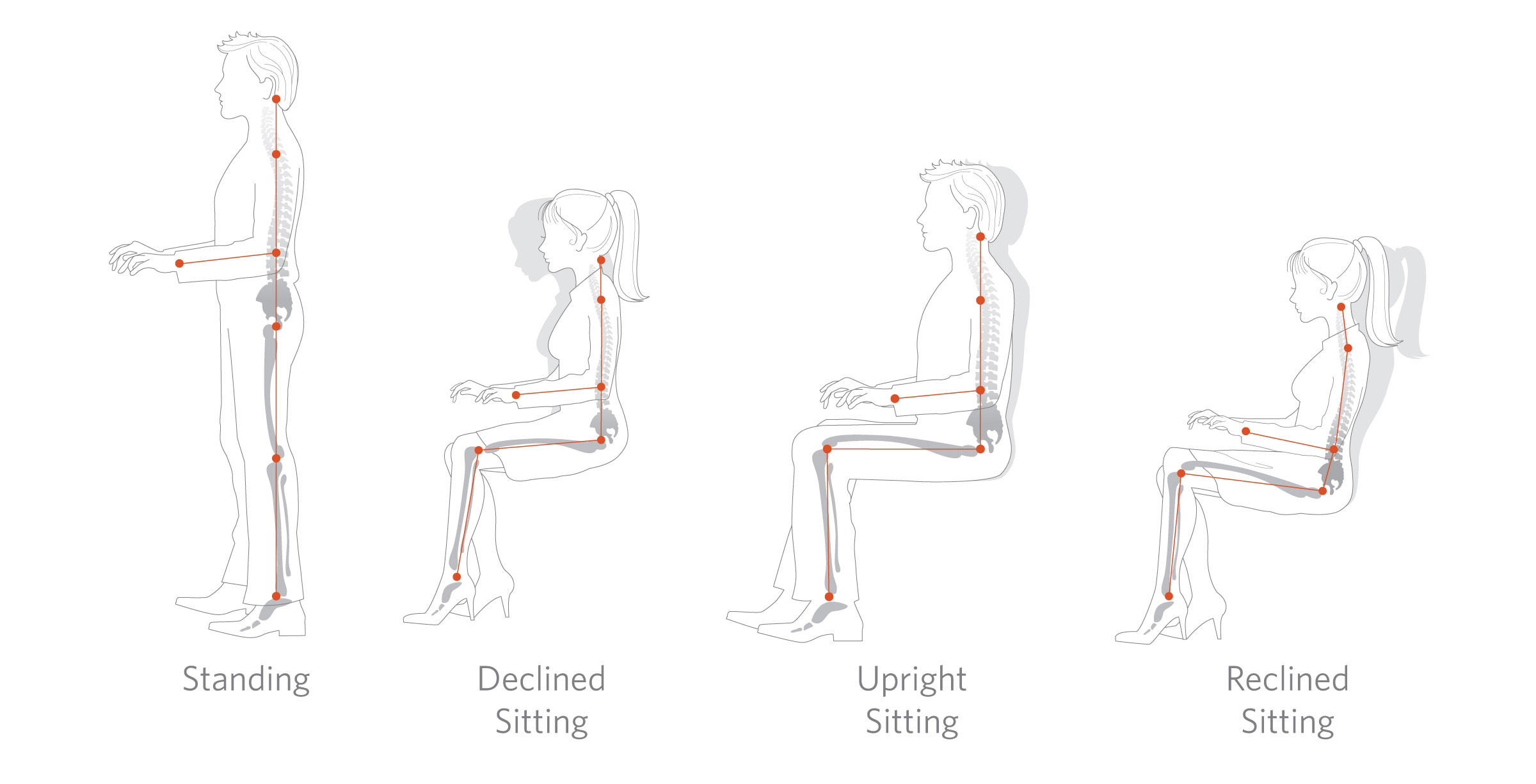 Facts About Standing Desks - Good Ergonomics In The Modern Workplace