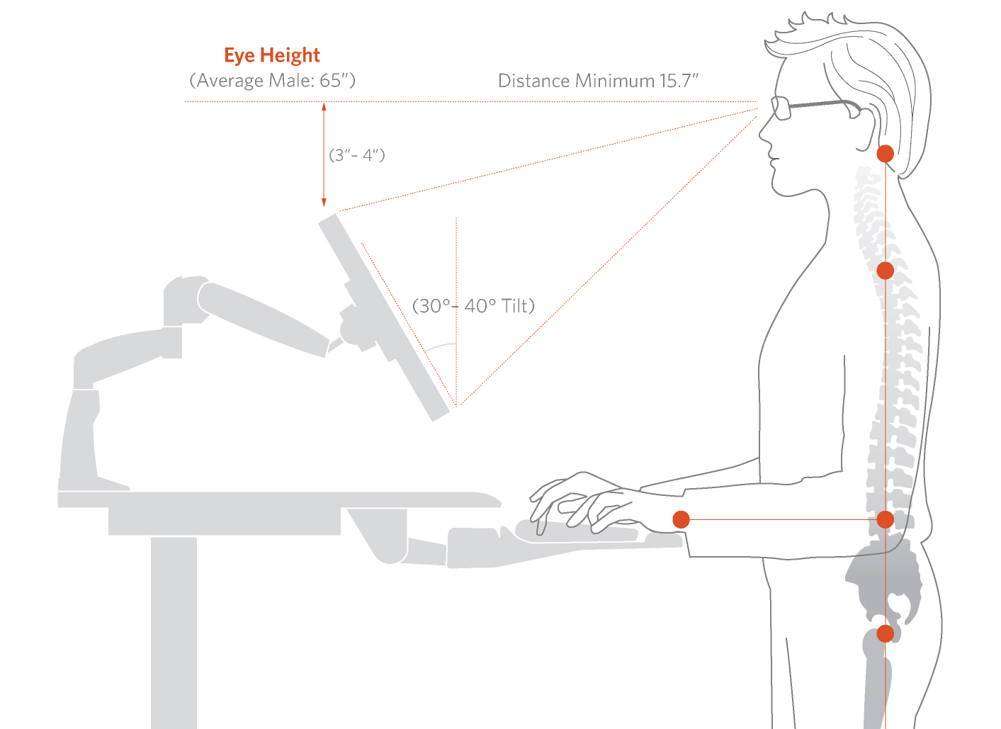 Facts About Standing Desks Good Ergonomics In The Modern Workplace