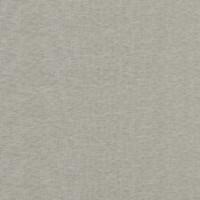 Pebble Gray PG