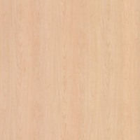 WM791SD Hardrock Maple