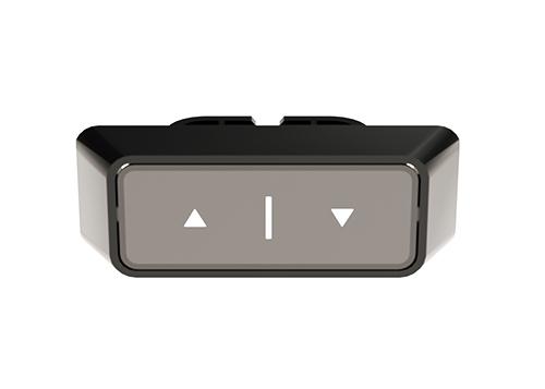 sentinel-standard-switch